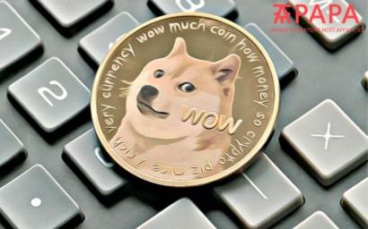 Best Dogecoin Casinos 2021
